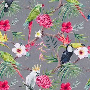 Exotic Bird Parrot Paradise Toucan Cockatoo Tropical Jungle Birds Midweight Extra Wide Cotton Canvas Fabric