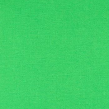 Tula Pink Designer Solids Cricket Green Plain Blender Coordinate Cotton Fabric