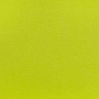 Tula Pink Designer Solids Mojito Acid Green Yellow Lime Chartreuse Plain Blender Coordinate Cotton Fabric