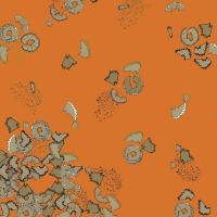 Pencil Club Pencil Shavings in Permanent Orange Heather Givans Stationery Pencils Cotton Fabric