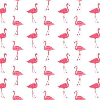 REMNANT 59cm Flamingos Fruity Friends Flamingo Bird on White Tropical Cotton Fabric