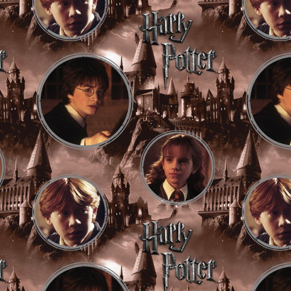 DIGITAL PRINT Harry Potter Hogwarts and Characters Ron Weasley Hermione Gra