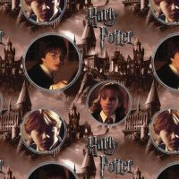 DIGITAL PRINT Harry Potter Hogwarts and Characters Ron Weasley Hermione Granger DELUXE Hogwarts Magical Wizard Witch Cotton Fabric