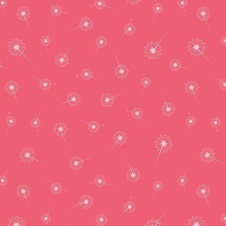 Paper Daisies Dandelion Dark Pink Dandelions Seed Head Botanical Cotton Fab