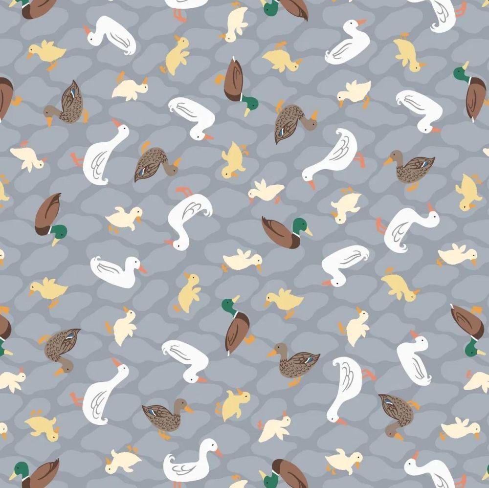 The Village Pond Ducks on Grey Duck Mallard Duckling British Wildlife Cotto