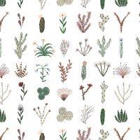 Figo Desert Wilderness Plants Grid Cactus Cacti Botanical Succulent Cotton Fabric