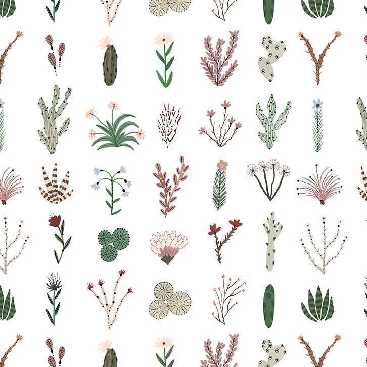 Figo Desert Wilderness Plants Grid Cactus Cacti Botanical Succulent Cotton