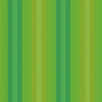 Alison Glass Kaleidoscope Stripes and Plaids Lichen Stripe Shot Woven WV9540-LICHEN Cotton Fabric