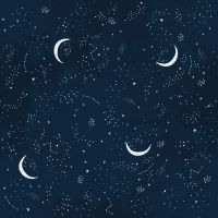 DESTASH 1.3m Brave Enough to Dream Crescent Moon Multi Constellations Sky Star Night Skies Dear Stella Cotton Fabric