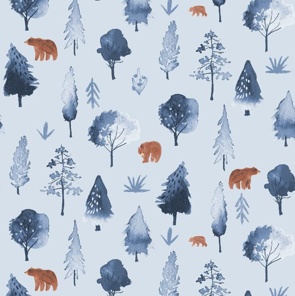 Brave Enough to Dream Walkabout in Misty Bear Tiny Grizzly Brown Bears Dear