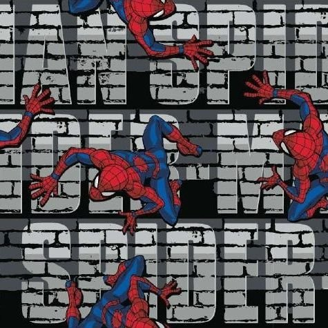 Spider-Man Web Crawler Wall Bricks Text Marvel Spiderman Comic Book Superhe