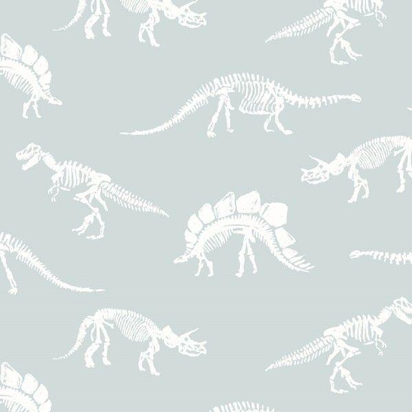 You Rock Fossils In Splash Dinosaur Bones Fossil Skeleton Dear Stella Cotto