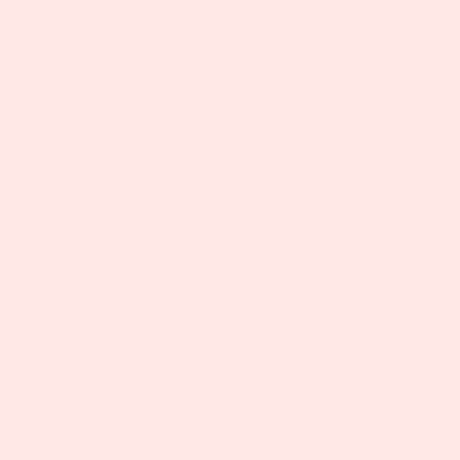 PRE-ORDER Tula Pink Designer Unicorn Poop Solids Peach Fuzz Plain Blender C
