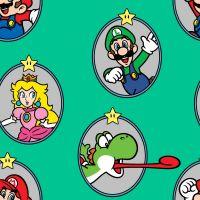 Nintendo Super Mario Character Frames Luigi Princess Peach Yoshi Game Gamers Video Game Cotton Fabric