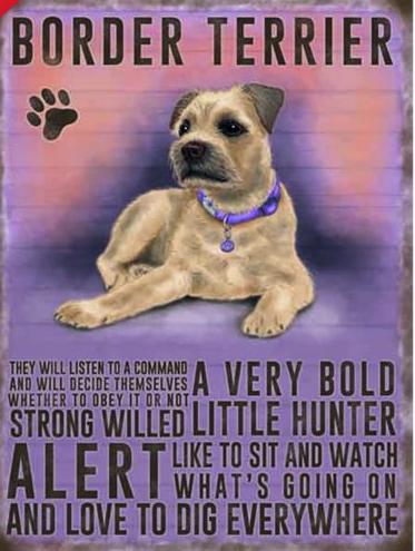 Enamel hanging sign 9cm x 6.5cm (Border Terrier)