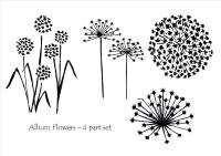 Allium Flowers - 4 part set: pre-order, due Feb 2021