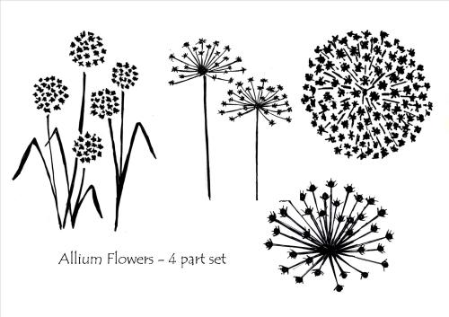 Allium Flowers - 4 part set