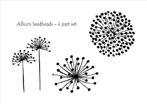 Allium Seedheads - set of 3