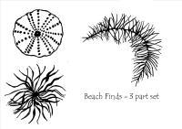 Beach Finds - set of 3