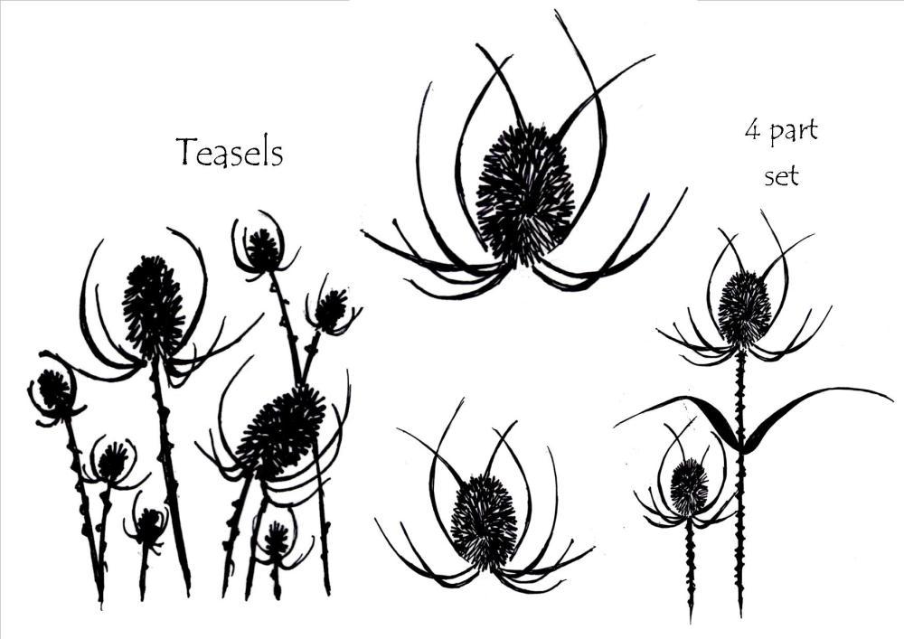 Teasels - 4 part set