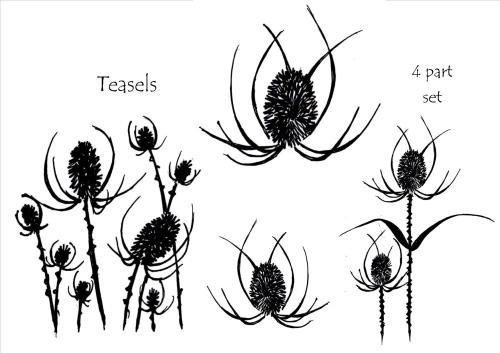 Teasels - 4 part set