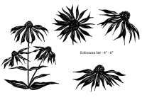 Echinacea Set of 4