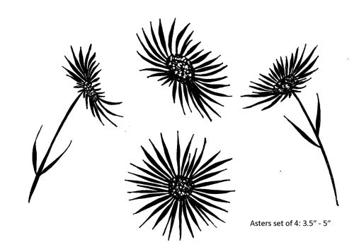 Asters : Set of 4