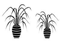 "Grasses Pots pair: 7"" & 5"""