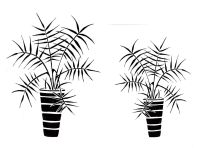 "Palm Pots pair: 7"" & 5"""