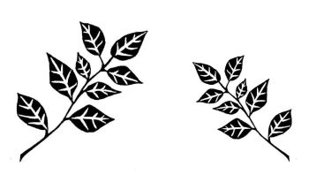 "Alder Leaf pair 5"" & 3.5"" pre-order due Oct 2020"