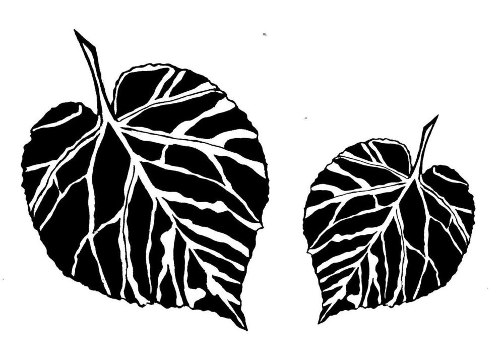 Lime Leaf pair:4