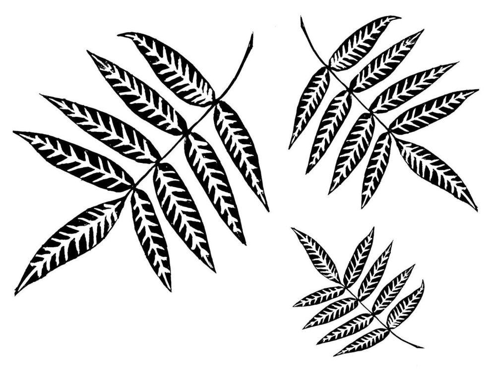 Willow Leaf set: 5