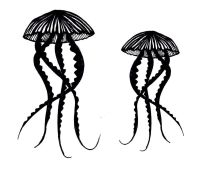 """Jellyfish pair 5"""" & 4""""  pre-order due Oct 2020"""