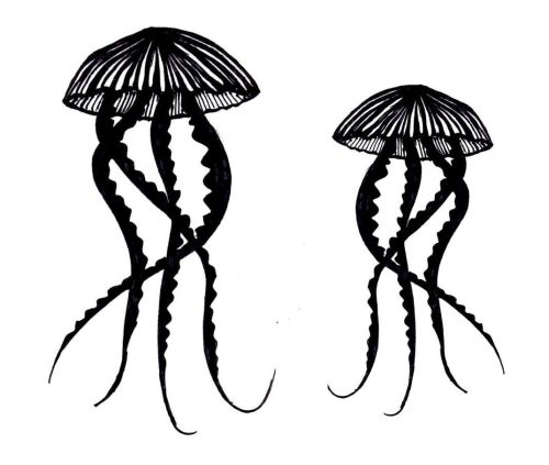 Jellyfish pair 5