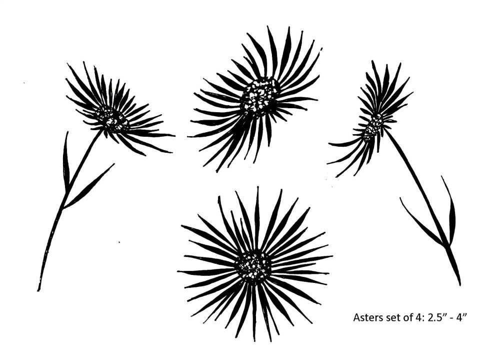 Asters set of 4: smaller set and reversed orientations