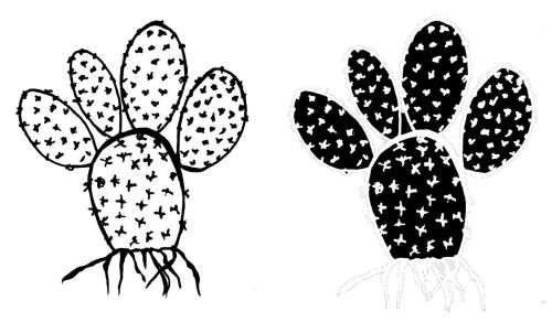 Mouse Ears Cactus - positive and negative: pair 3.5