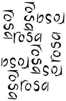 Rosa Script A5