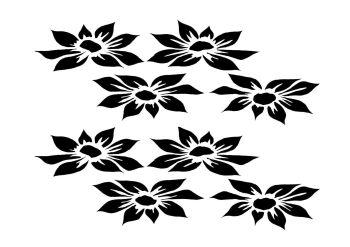 Dahlia 8 blooms offset A4