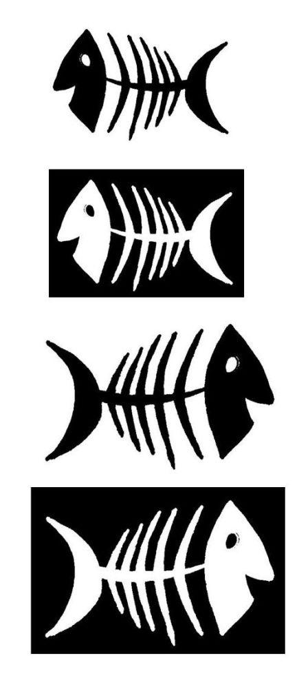 Fishes Set B: 4 part set 3.5