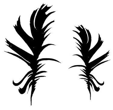 Washed feather pair:  4