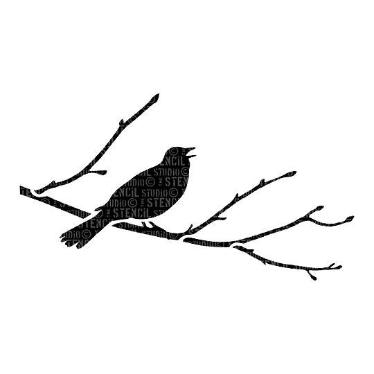 Blackbird Branch A5