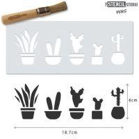 "Mini: Cactus pots 8"" x 3"""