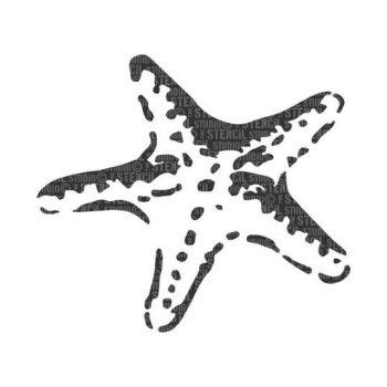 Stella Starfish A5