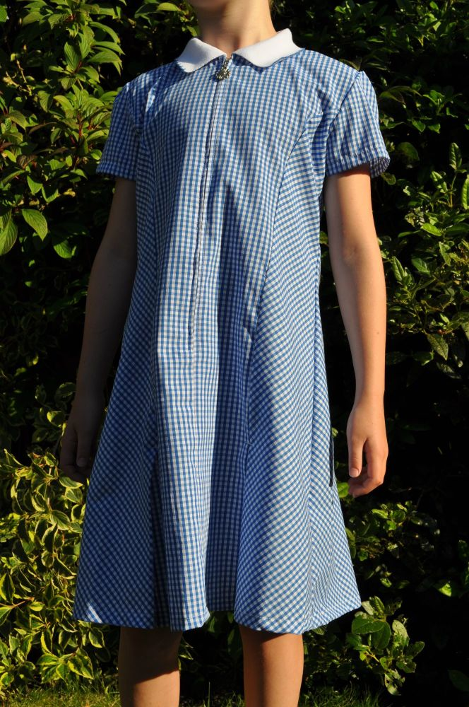 Zip front blue gingham dress with scrunchie