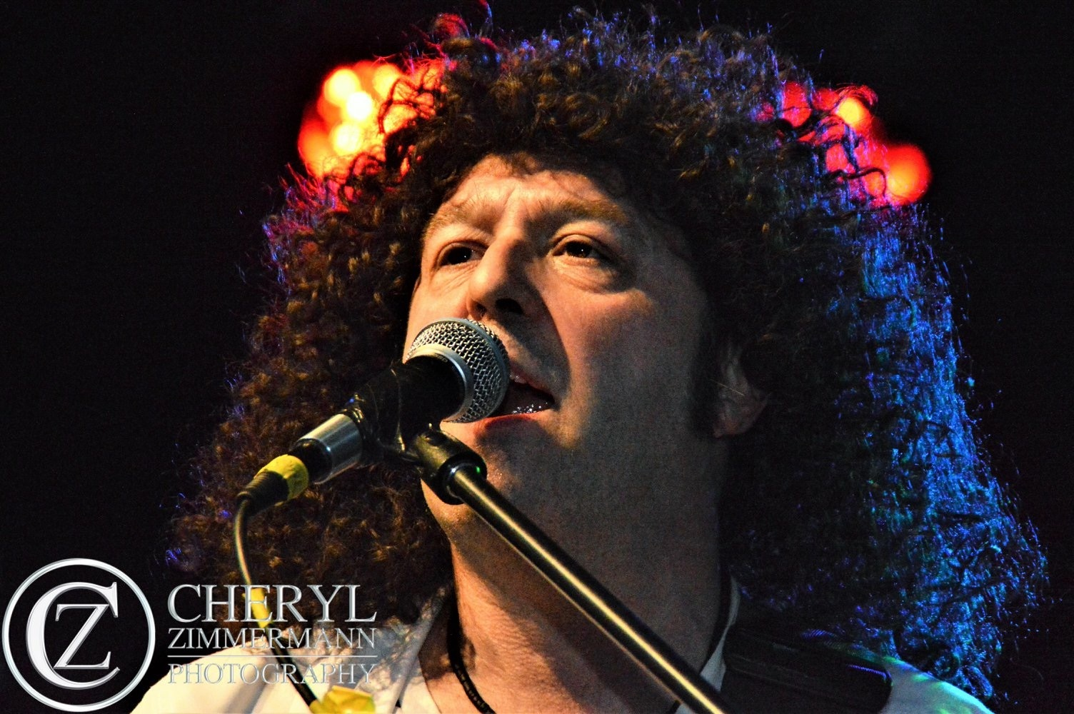 Brian May - Pure Queen Tribute Band
