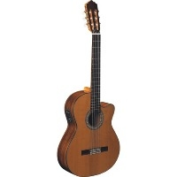 Electro-Classical Guitars (with pickup)