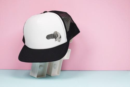 Giant Anteater Trucker Hat