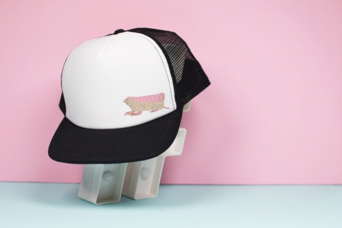Pink Fairy Armidillo Trucker Hat
