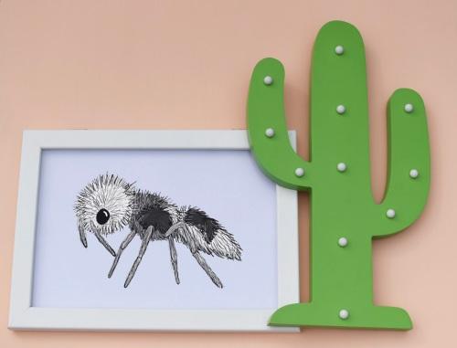 Panda Ant A4 Print
