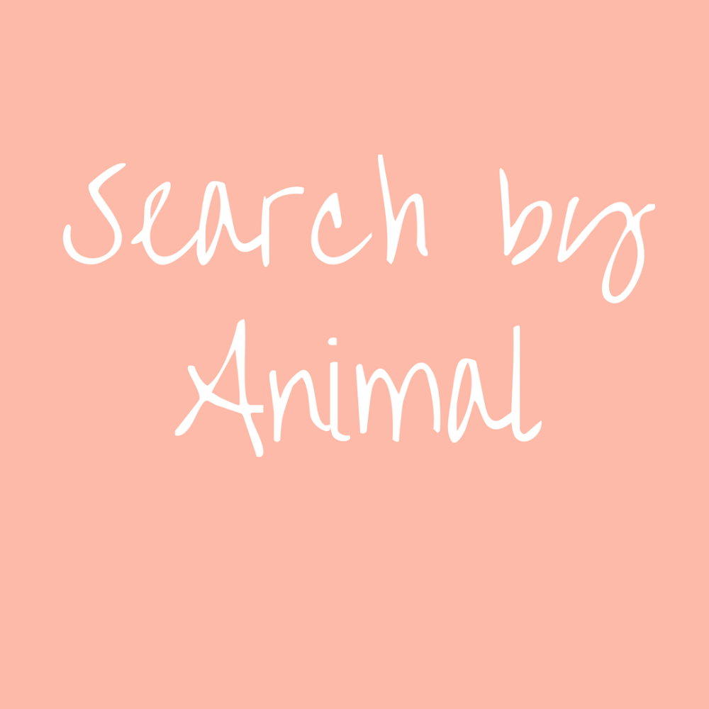Search by Animal